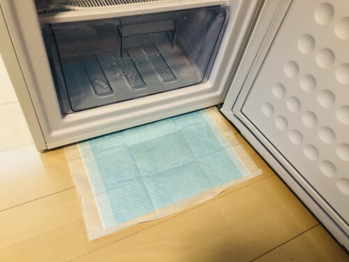 冷凍庫の霜取り作業の水濡れ対策にペットシーツを敷いてみました。